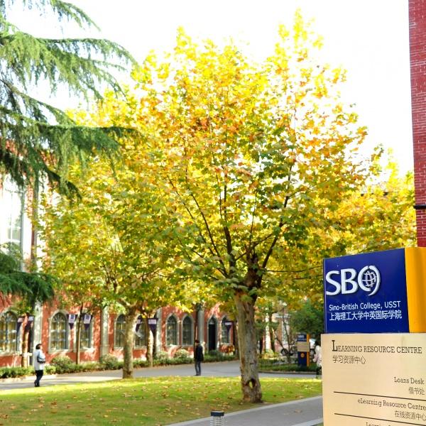 SBC Makes International Award Shortlist
