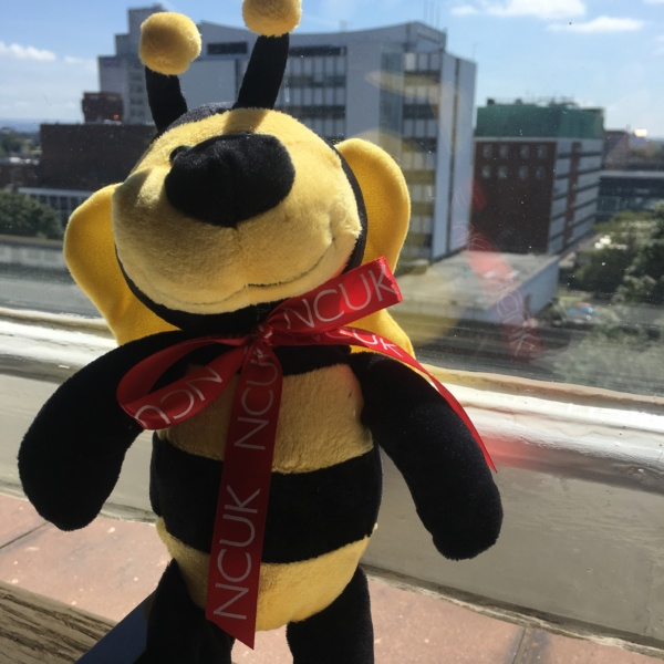 NCUK welcomes Professor Bee
