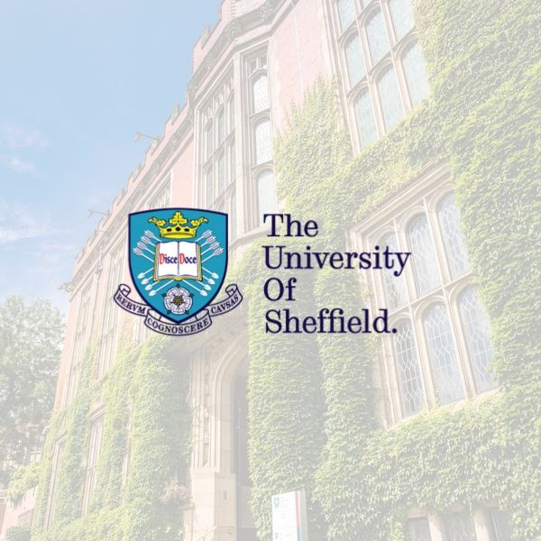 De universiteit van Sheffield